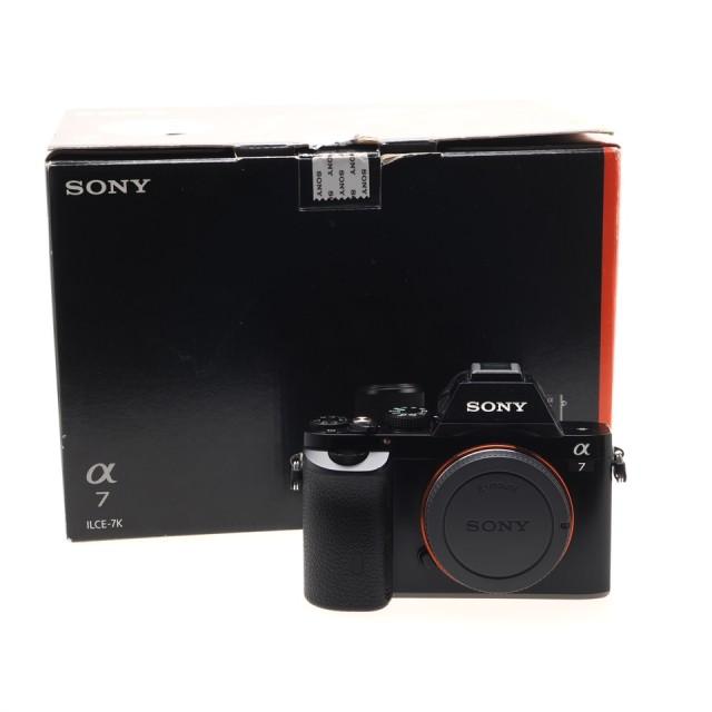 Sony A7 (Body) (7320 scatti)